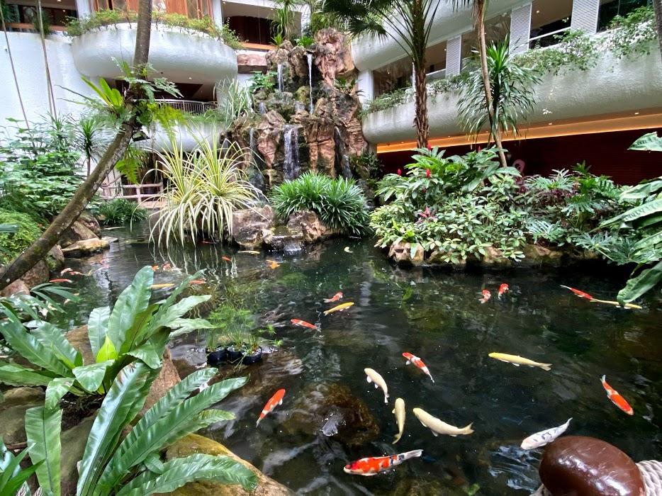 Garden wing pond